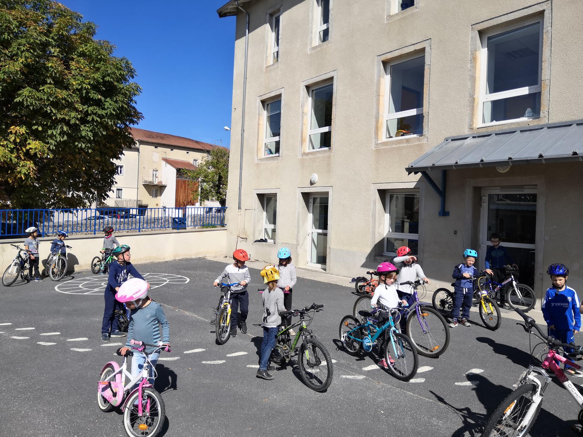 Cycle vélo en CE